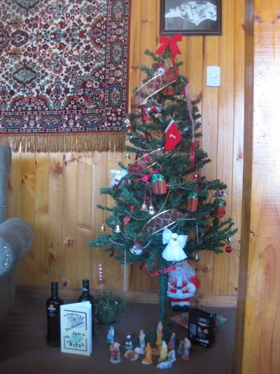 Wenn man auf Reisen geht, gibt´s viel zu erzählen. Weihnachten 2011 verbrachte ich mit Einheimischen auf der Insel Chiloé, Chile