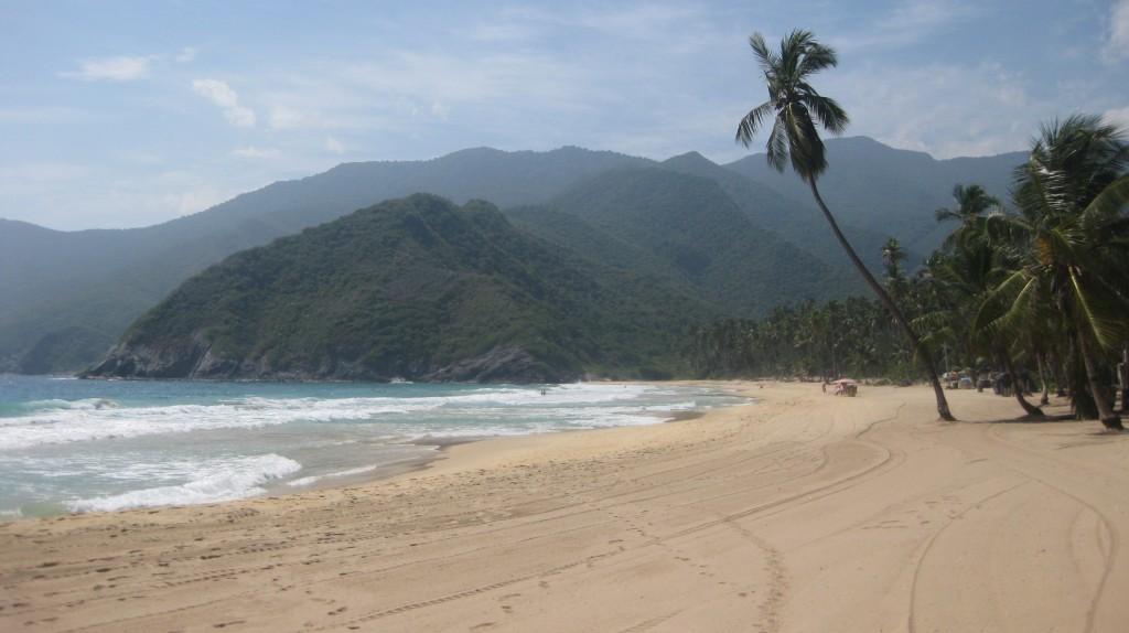Die Playa Grande. Typisch tropisch mit viel grün, Palmen spenden Schatten