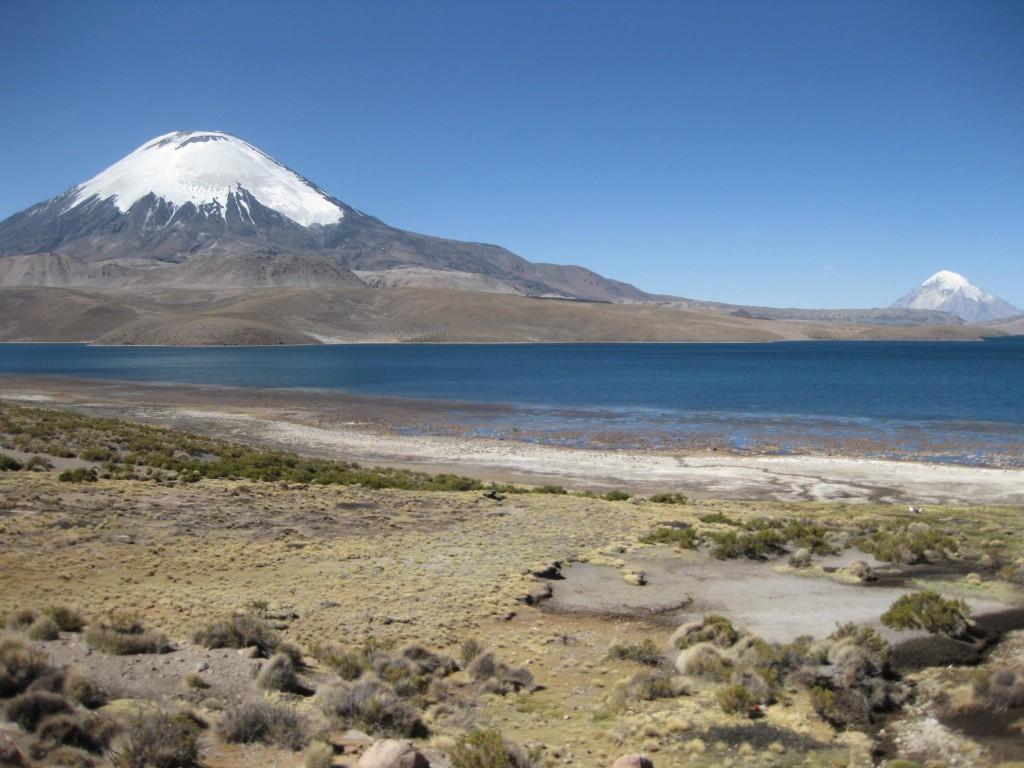 Am höchsten See der Welt im Nationalpark Lauca direkt an der chilenisch-bolivianischen Grenze. Vulkane, wie hier hinter dem See, sind typisch für Chile, ungefähr 2000 sollen auf chilenischem Boden stehen