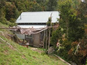 Unsere Hütte in Maicolpué. Unter dem Dächle konnten wir Holz spalten.