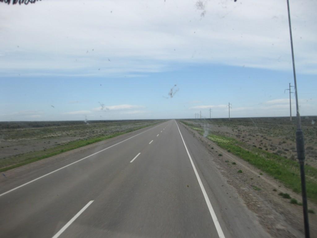 Per Anhalter durch Patagonien. Kilometerlang immer geradeaus, kein Baum, kein nichts