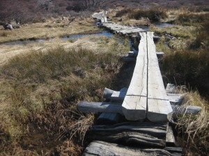 Wandern in der Umgebung von El Chaltén.