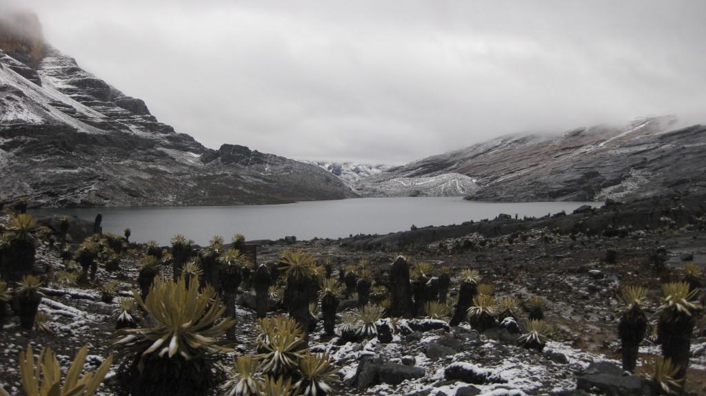 Die Laguna de la Plaza im Nationalpark El Cocuy, auf über 4000 Metern Höhe über dem Meer