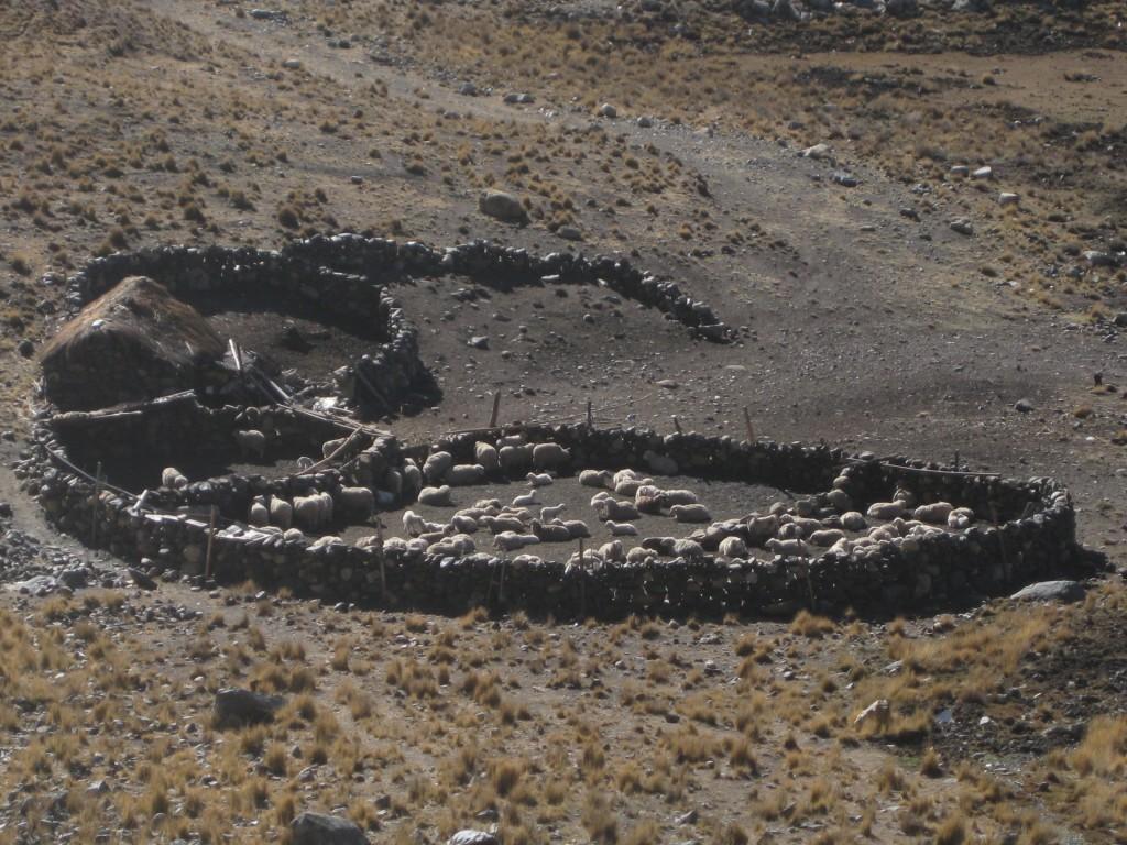 Bauernhaus und Zaun aus Steinen. Etwas oberhalb des Dorfes Choquekhota