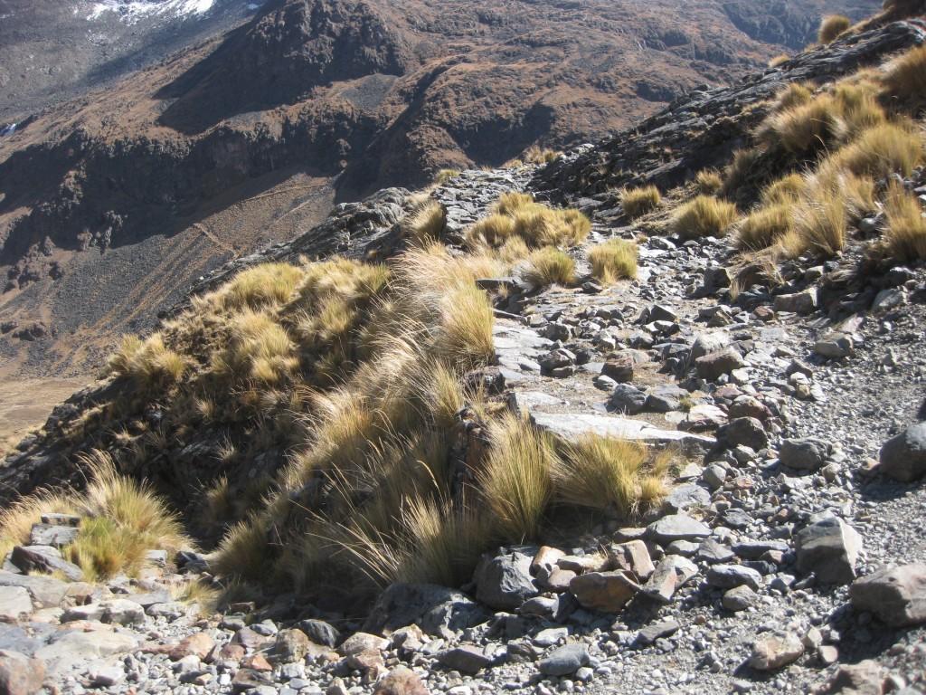 Bissiger Anstieg auf dem Weg zum Pass Apacheta Takesi