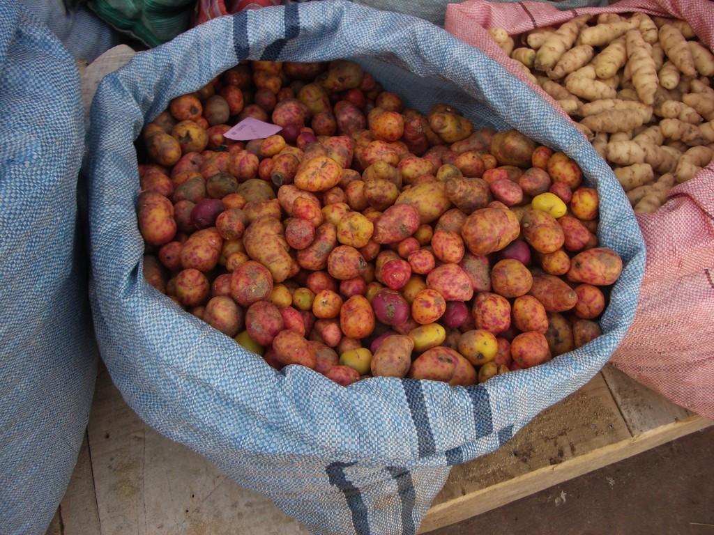 Bunte Kartoffeln auf dem Markt in Sucre, Bolivien