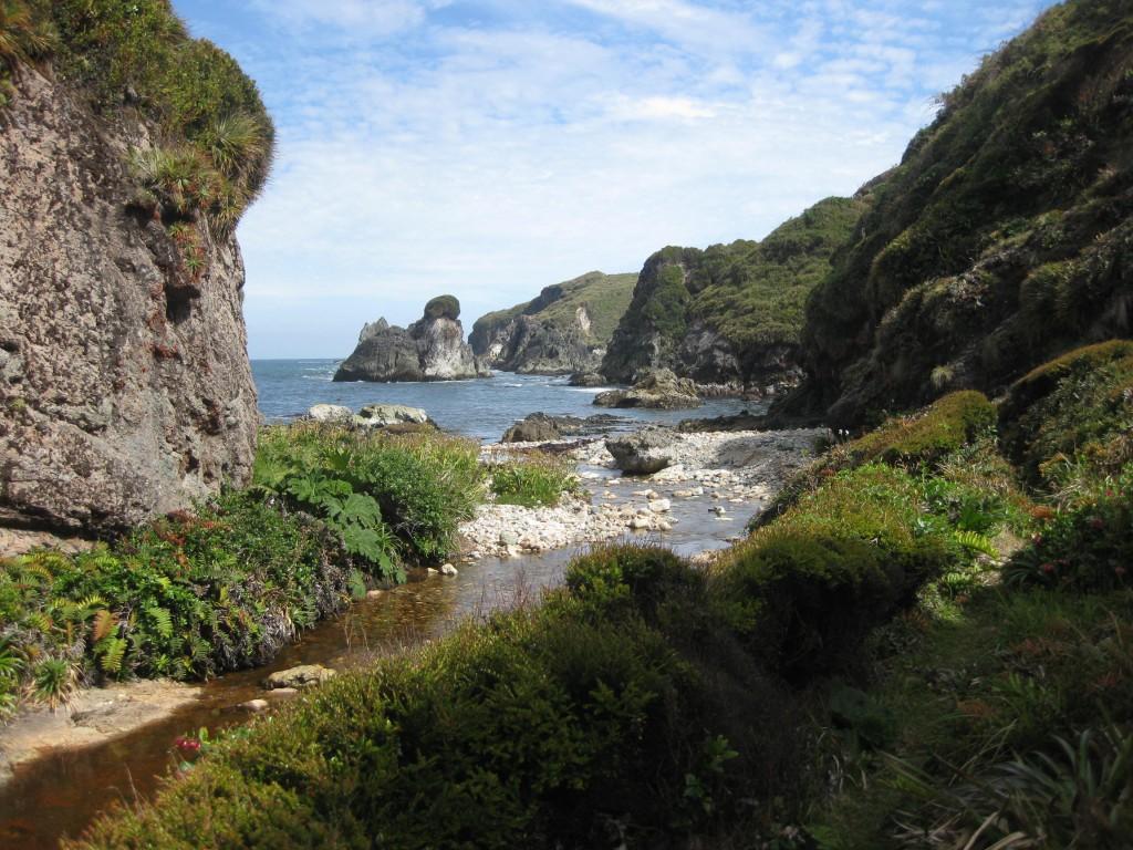 Felsküste bei Duhatao, Chiloé