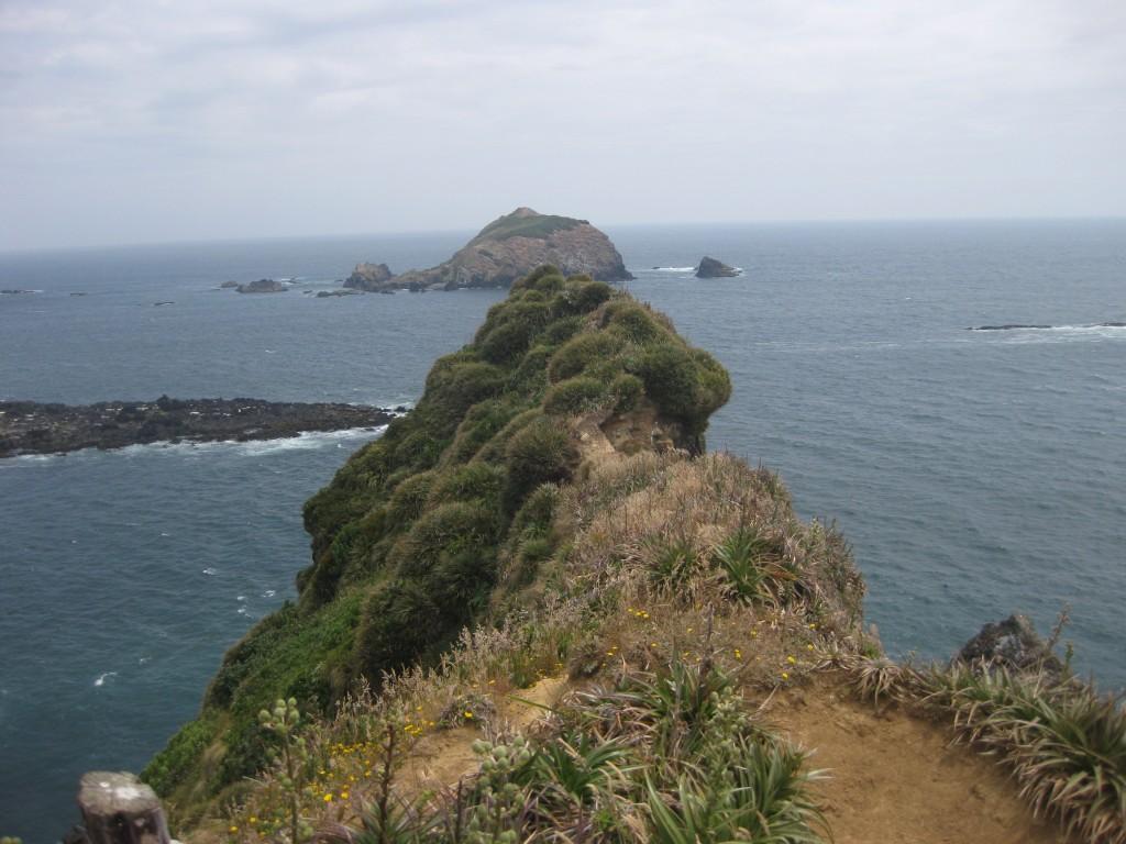 Ausblick auf, Felsküste, Inseln und Meer bei Puñihuil