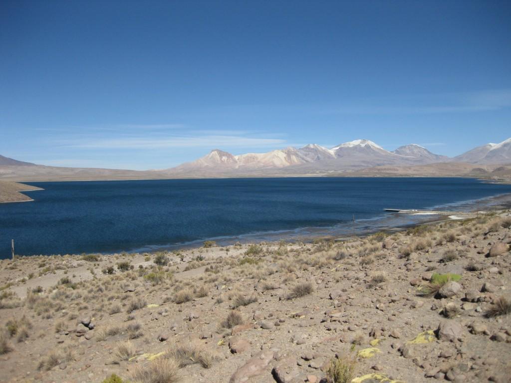 Die chilenische Hochebene im Nationalpark Lauca und der Lago Chungará
