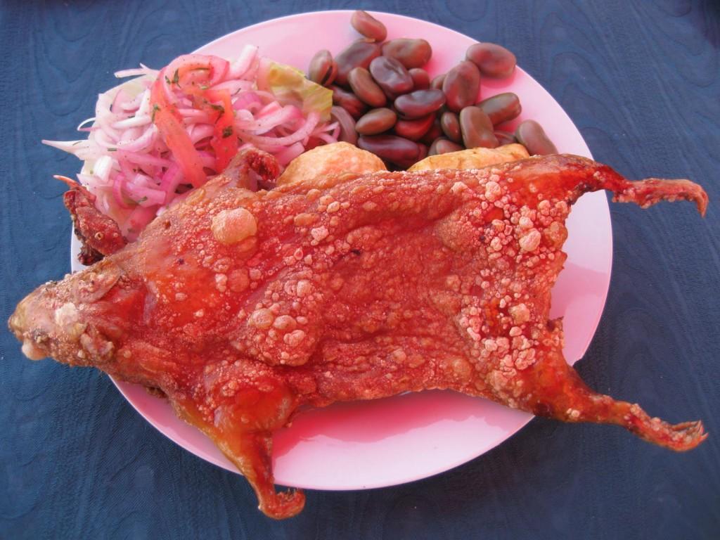 Frittiertes Meerschweinchen essen in der Nähe von Arequipa. Ein Erlebnis, wenn auch wenig Fleisch, geschmacklich ähnlich Hähnchenfleisch