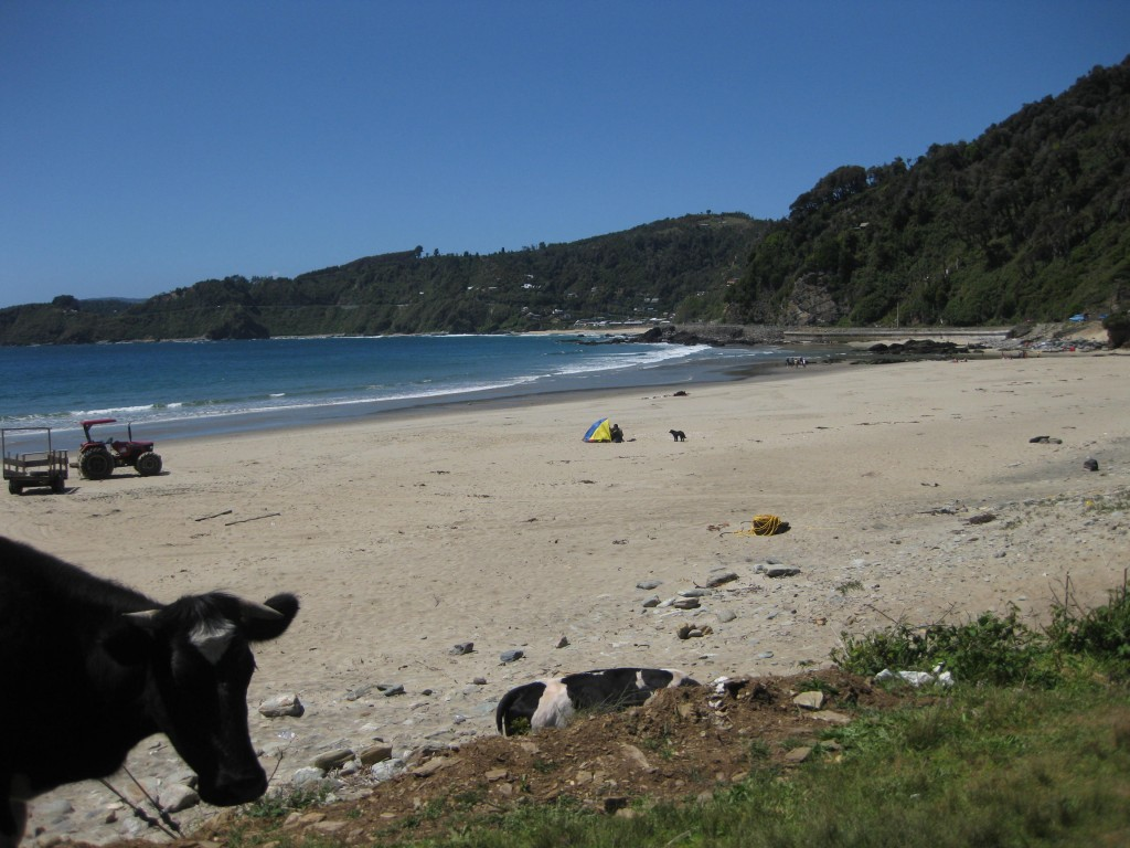 Strand von Maicolpué